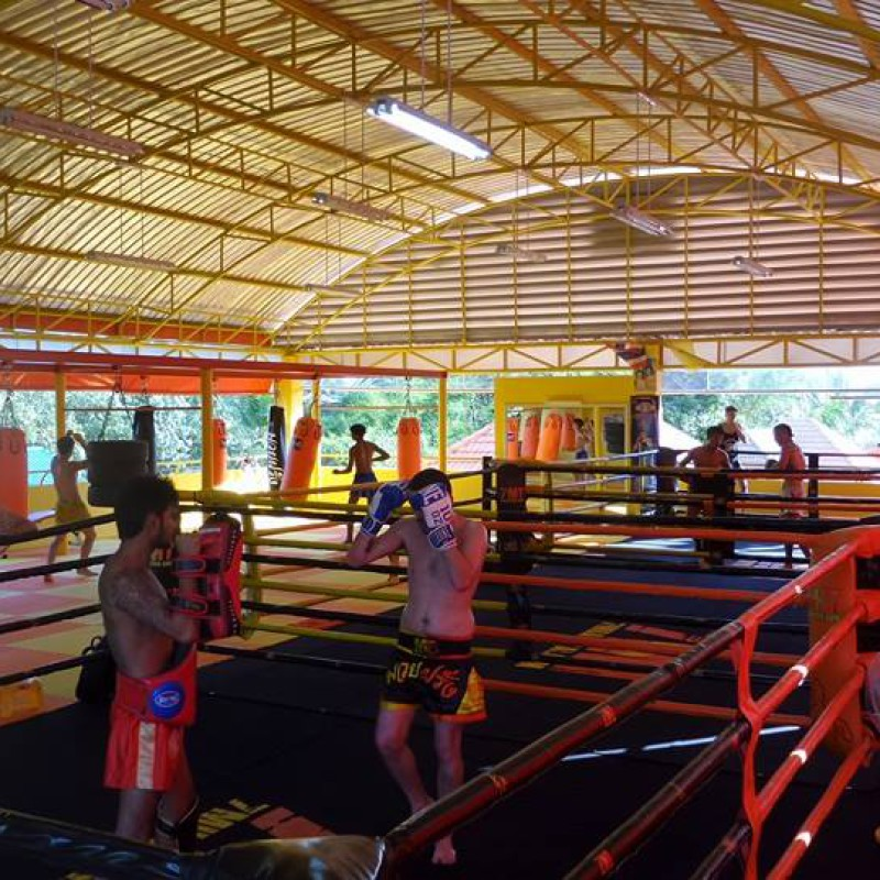 Video: Muay Thai training in Thailand