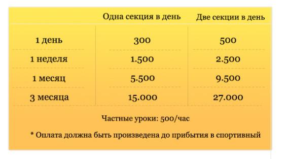 Pricing russian 7 muay thai muay farang boxing gym thailand-