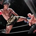 Buakaw Banchamek_Buakaw Por Pramuk_Muay Thai-k1 (5)