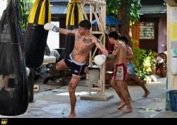 muay thai camps hygiene, igene camp thailandesi, igiene palestre, igene palestra, hygiene gyms (2)
