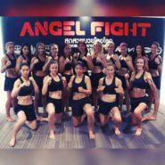 angel fight g