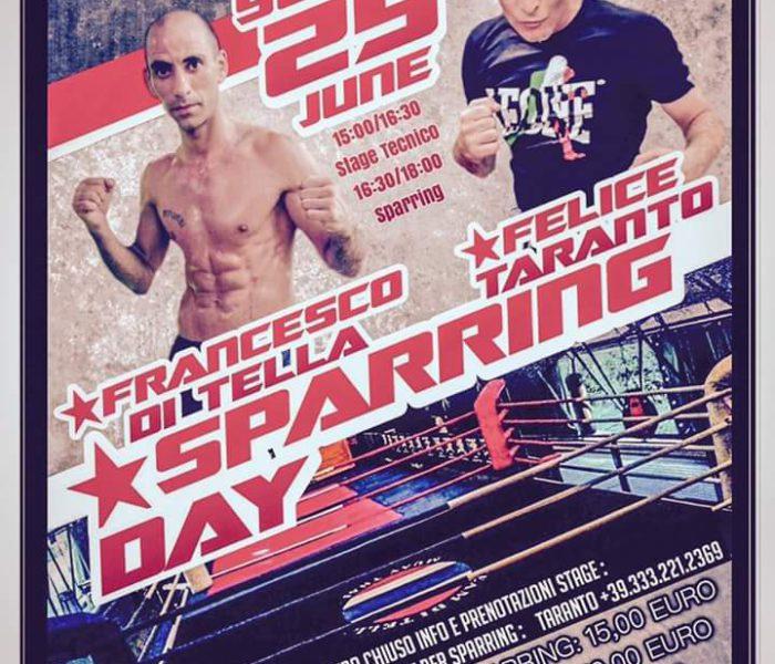 (Italiano) Uno stage tecnico di Muay Thai e di K1 presso il Palakombat di Arese il 25 Giugno