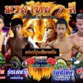 Channel 7 Poon 'Tiger vs Tiger'