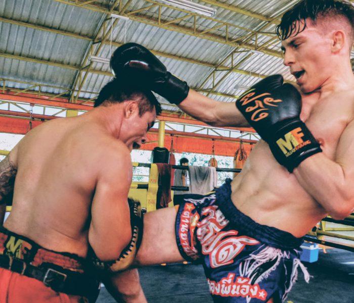 Guida sull' allenamento nelle arti marziali (ENG)